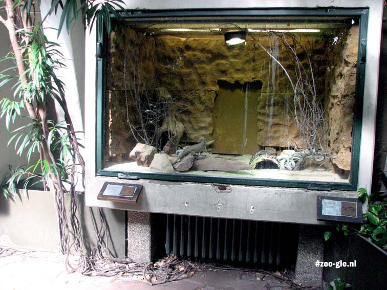 2007 Reptiles and heating