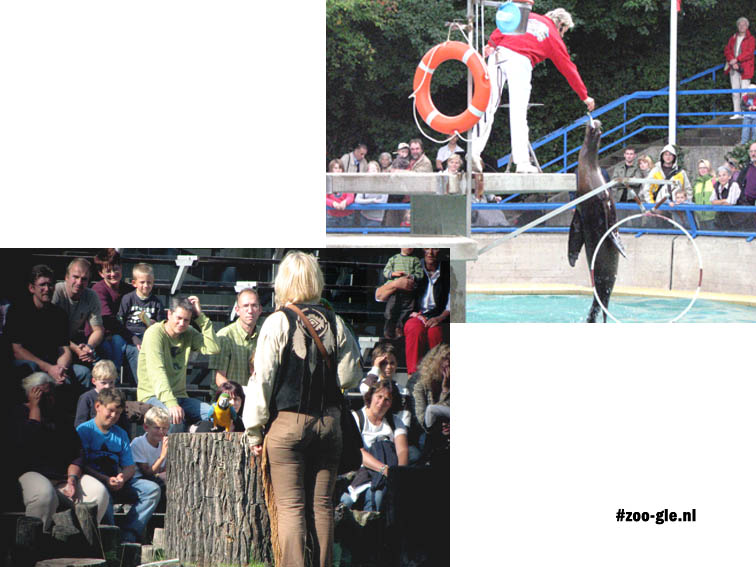 2007 Animal shows