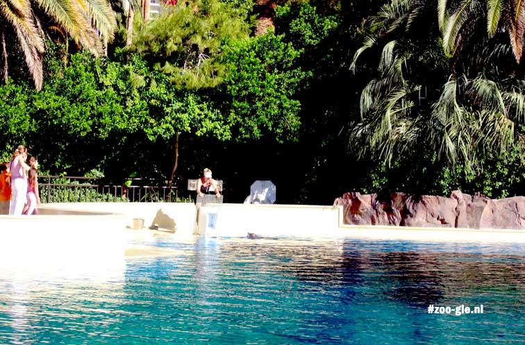 2006 Siegfried & Roys Dolphin Habitat