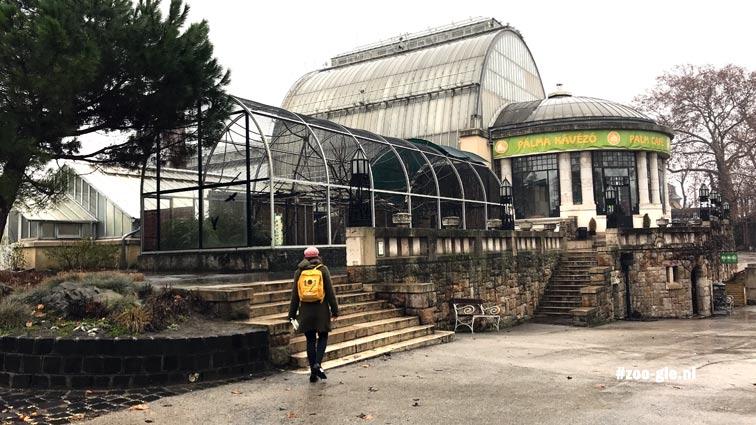 2019 Palmhuis zoo Boedapest