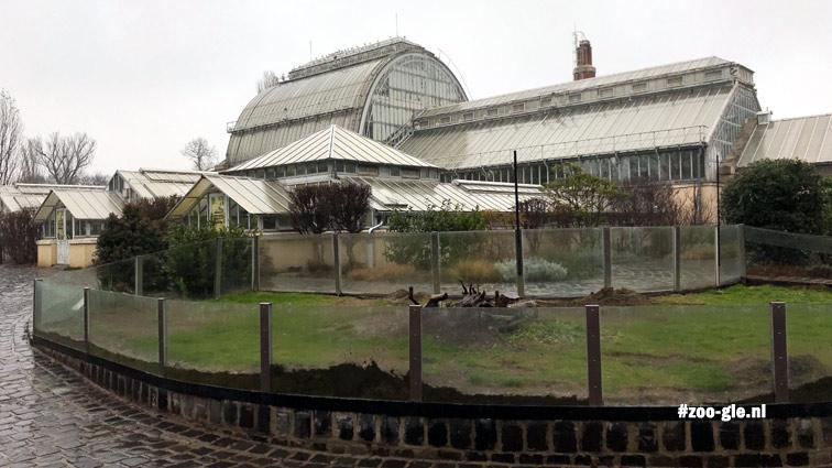 2019 Eiffel (uit Parijs ja) zette 1909-12 het Palmhuis in zoo Boedapest neer