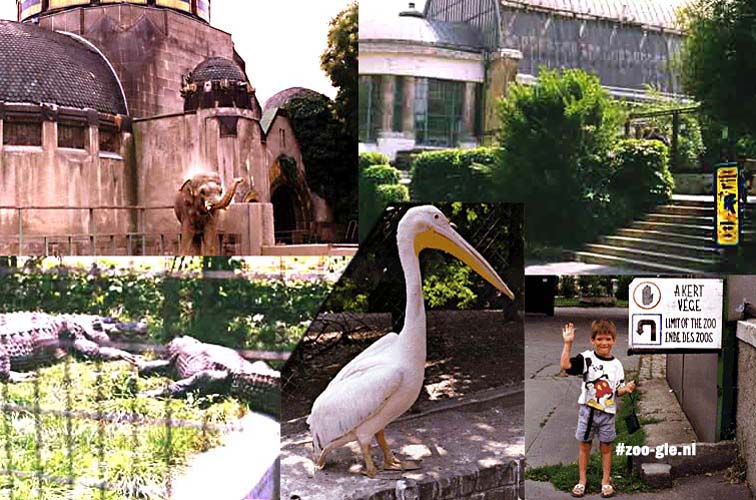 1995 Zoo Boedapest