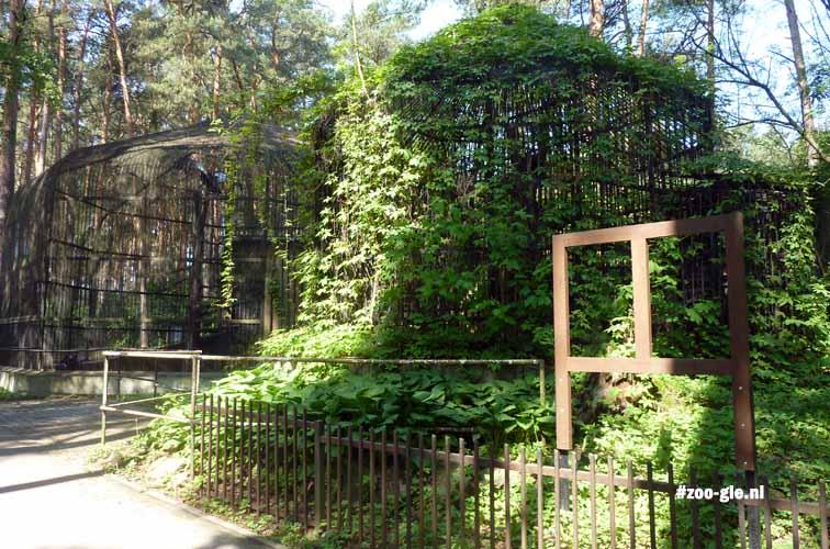 2014 Roofvogels in verbouwde tijgerkooi en groene kooien