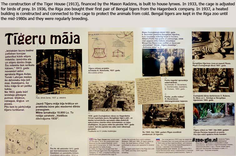 2014 History tiger enclosure
