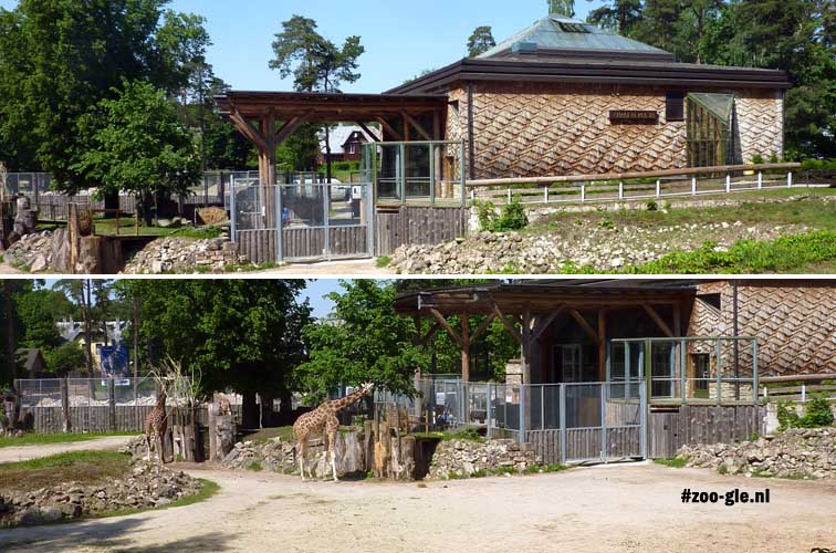 2014 Giraffe enclosure