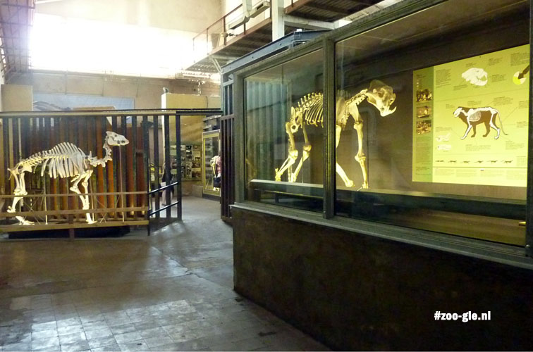 2014 Now in use as a zoological museum