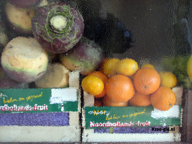 2009 Noord-Hollands fruit