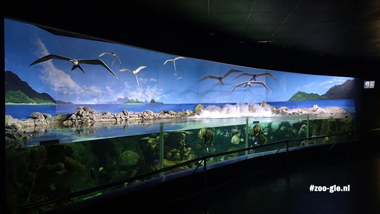 2016 Aquarium Madrid zoo