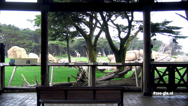 2006 African savanna (since 2004)