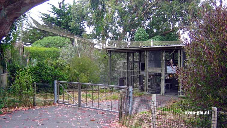 2006 Behoud kleine katten / Feline Conservation Center