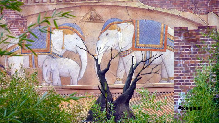 2010 Elephant enclosure decorated with a mural