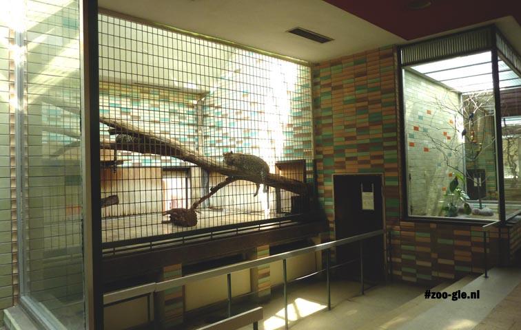 2013 Predators and tropical birds