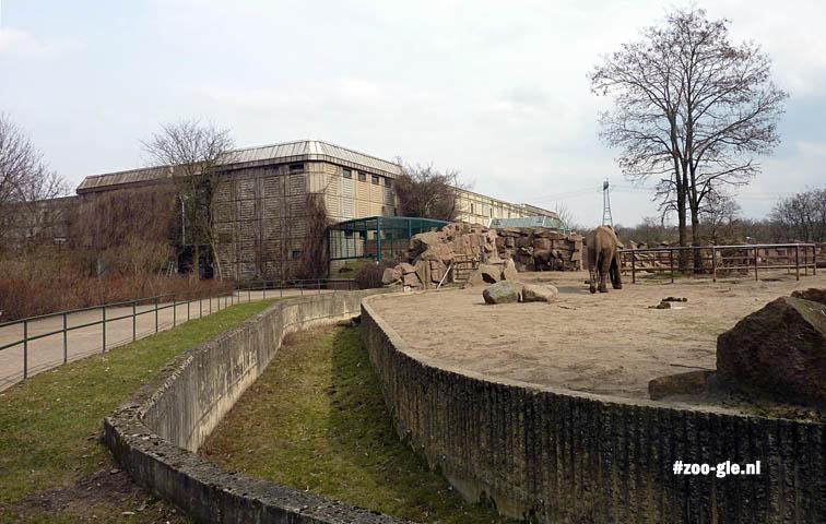 2013 Dry moat surrounding elephant compound