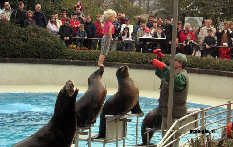 2005 Sea lion show