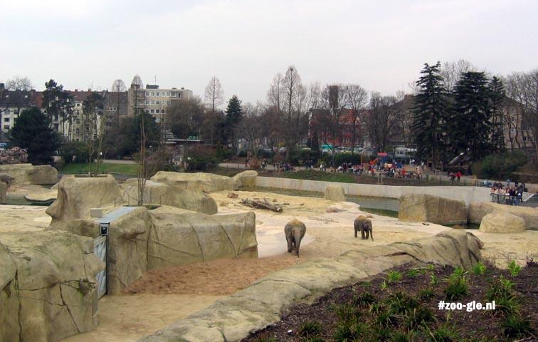 2005 Elephant park
