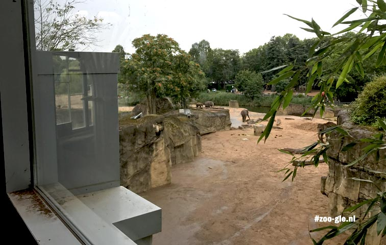 2017 Elephant park