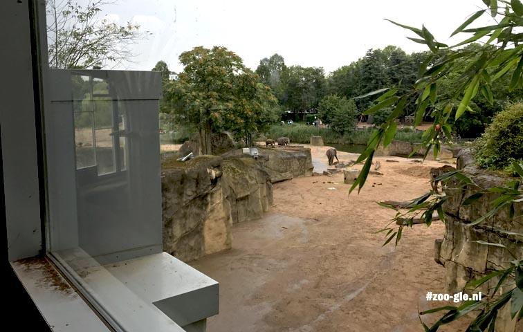 2017 Olifantenpark
