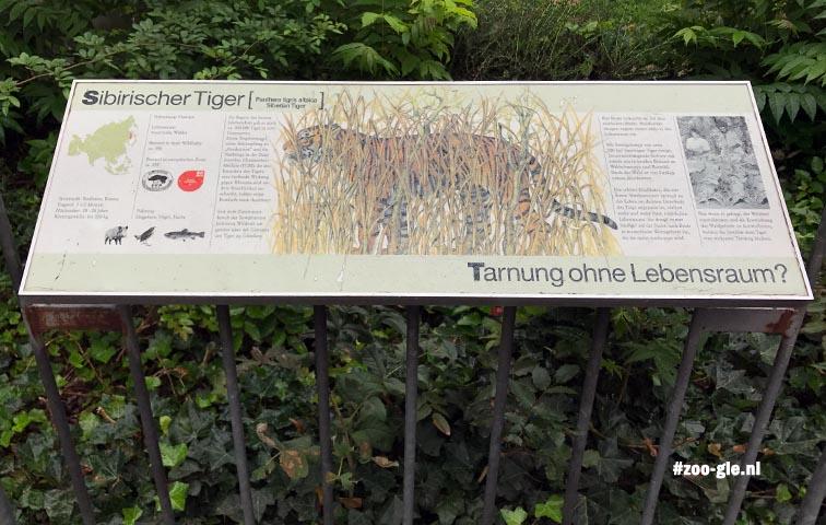 2017 Information panel Siberian tiger
