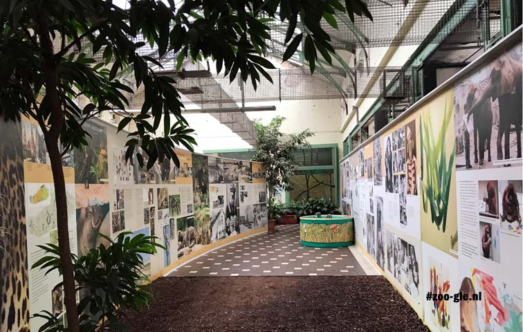 2017 Cologne Zoo 150 years exhibition