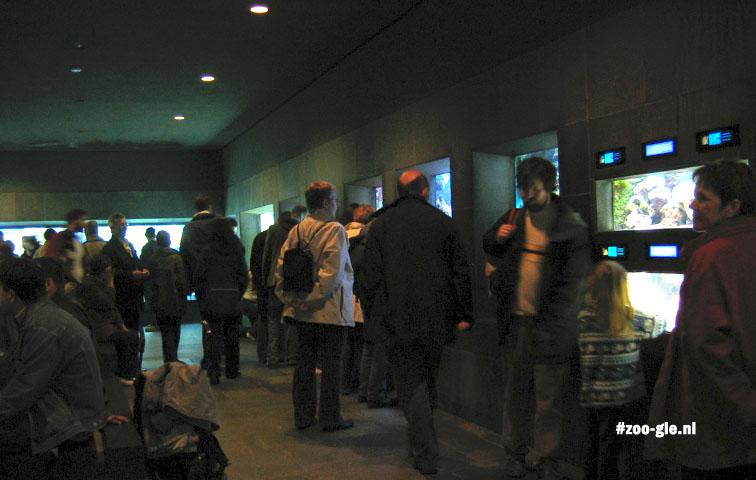 2005 Aquarium