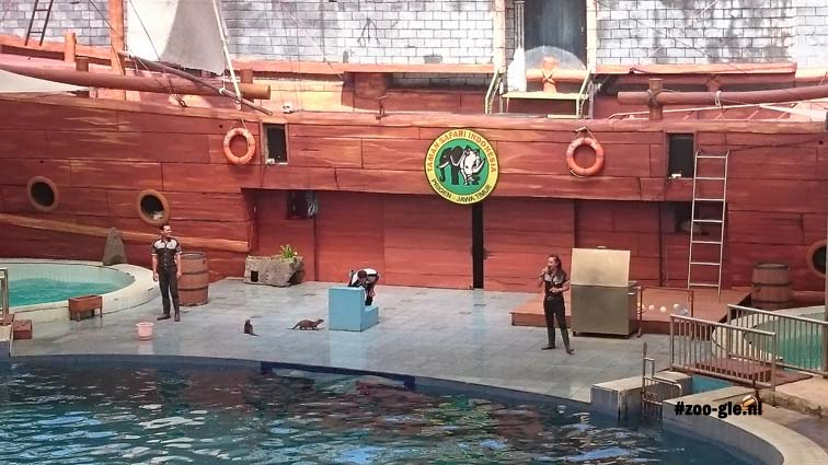 2017 Otters in het voorprogramma van de dolfijnen