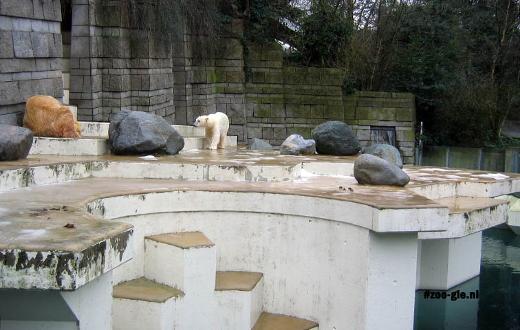2007 This polar bears enclosure dates from 1956 though