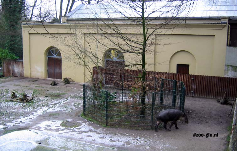 2007 The old elephant house (1927) reopened in 2002 to house tapirs