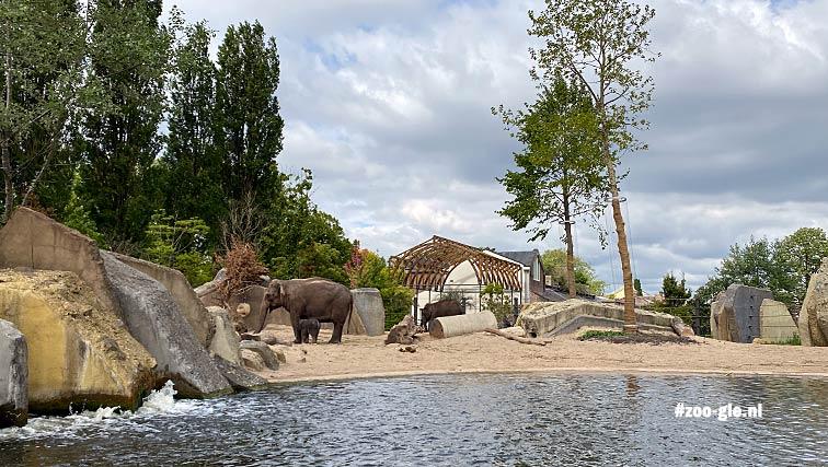 2020-05-15 Met het olifantje van begin mei
