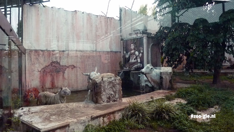 2017 Indian styled tiger enclosure