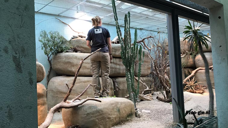 2018 Zoo worker behind thin mesh in the Vivarium