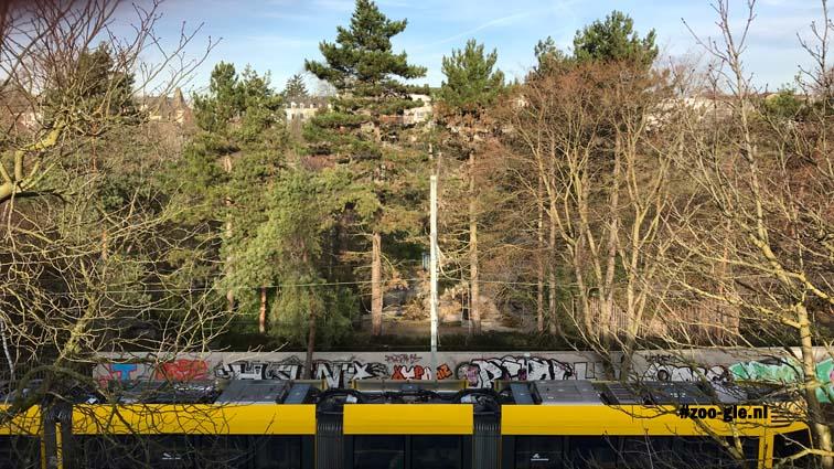 #1 Januari 2018 De zoo gezien vanaf de Binningerstrasse