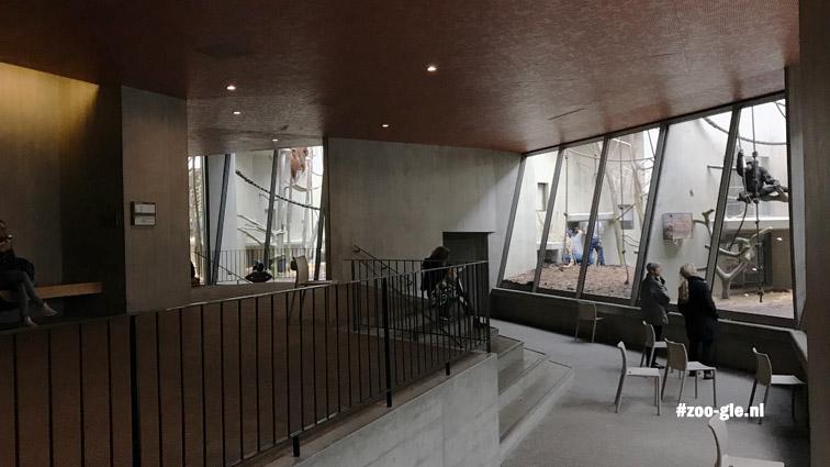2018 Ape House, slanted windows