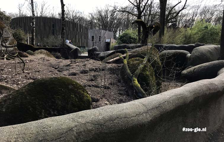 2018 Modern architecture behind the Hagenbeck meerkat enclosure