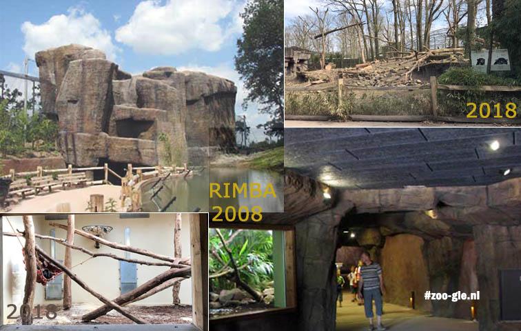 2008 en 2018 Rimba