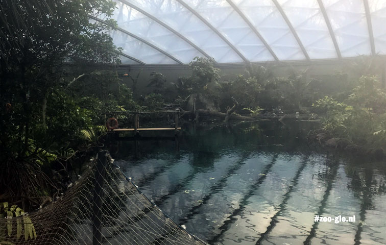 2018 Mangrovehal