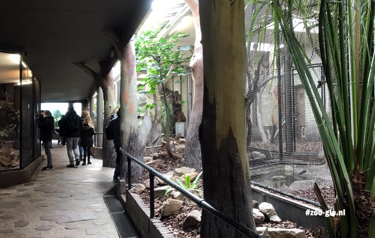 2018 Bird enclosure in the same building