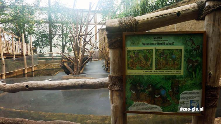 2010 Mandrill enclosure
