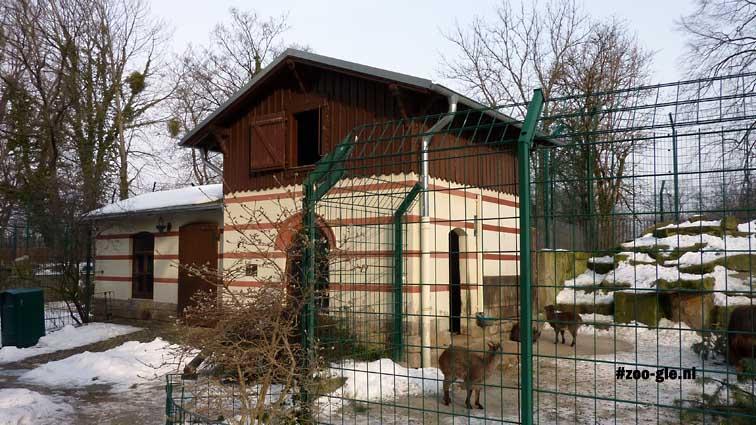 2010 Goat House 1862