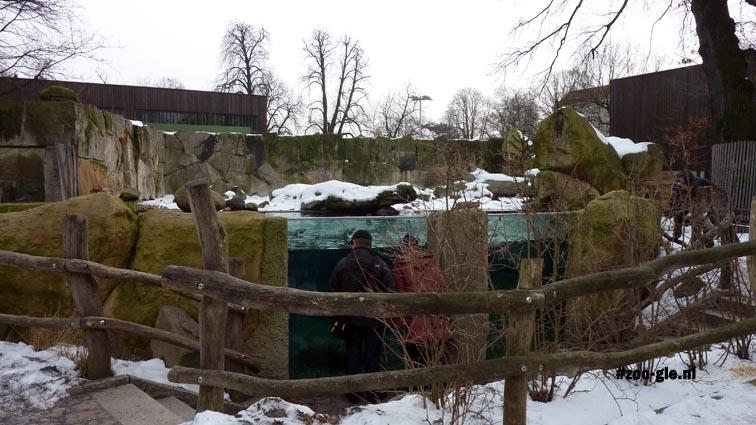 2010 Penguin enclosure