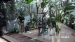 2018 Rainforest greenhouse containing polygonal aviaries holding tropical animals and a zookeeper
