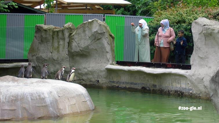 2006 Pinguïnverblijf