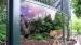 2006 Onderste deel tralies roofdierengalerij vervangen door glas