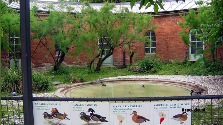2006 Oude fazanterie met eendenvijver