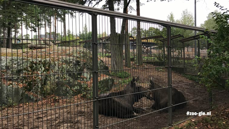 2018 Elk enclosure