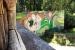 2018 Regenwoudhuis: muurschildering
