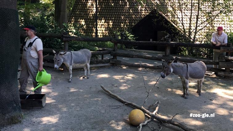2018 Verzorger in dierentuin Dortmund