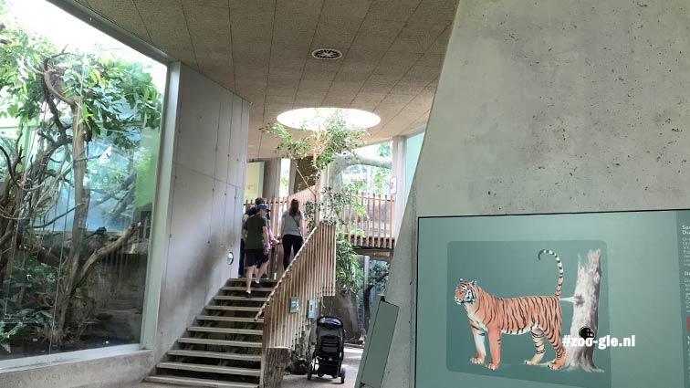 2018 Bezoekerstrap tijgerverblijf