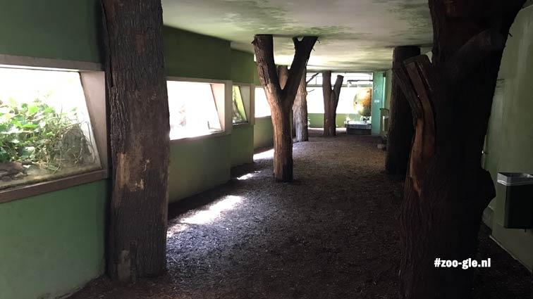 2018 Interieur apenverblijf 1962