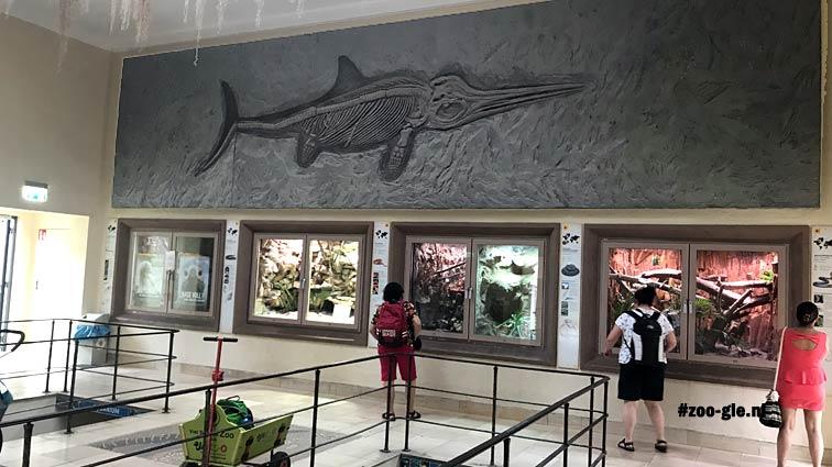 2018 Wie de Wereld van de Apen betreedt landt in een zoo in een zoo. Hier terrarium met trappen naar aquarium.