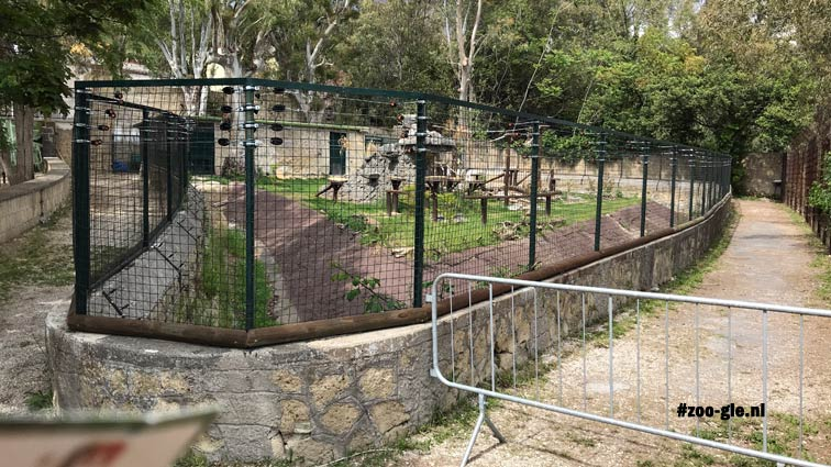 2019 Barbary sheep accommodation in the northeastern corner of the zoo